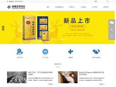 药品行业网站建设